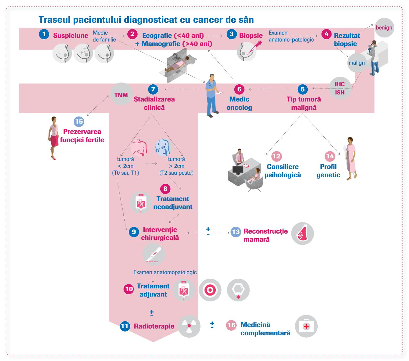 Cancer mamar - Wikipedia